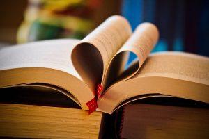 Buchempfehlung Zinnoberschule